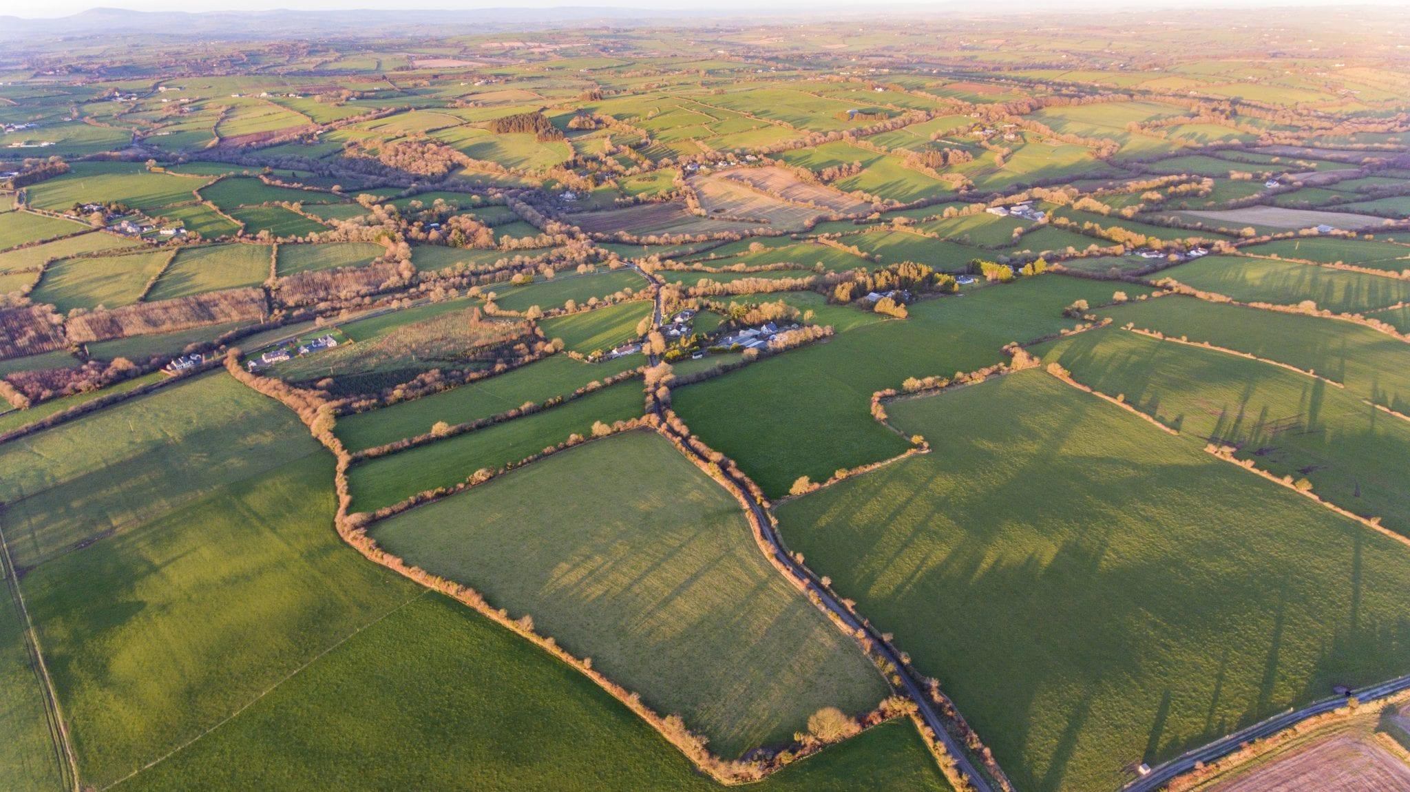 3. Aerial Photo 8