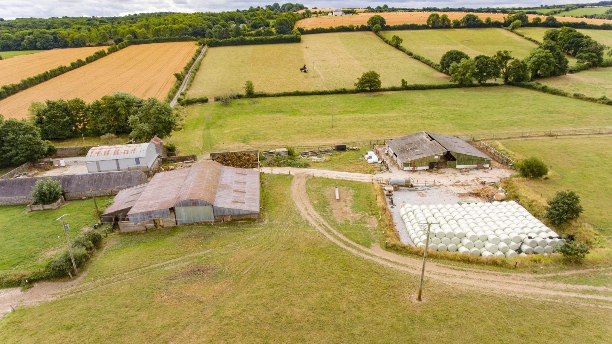 5. Farmyard