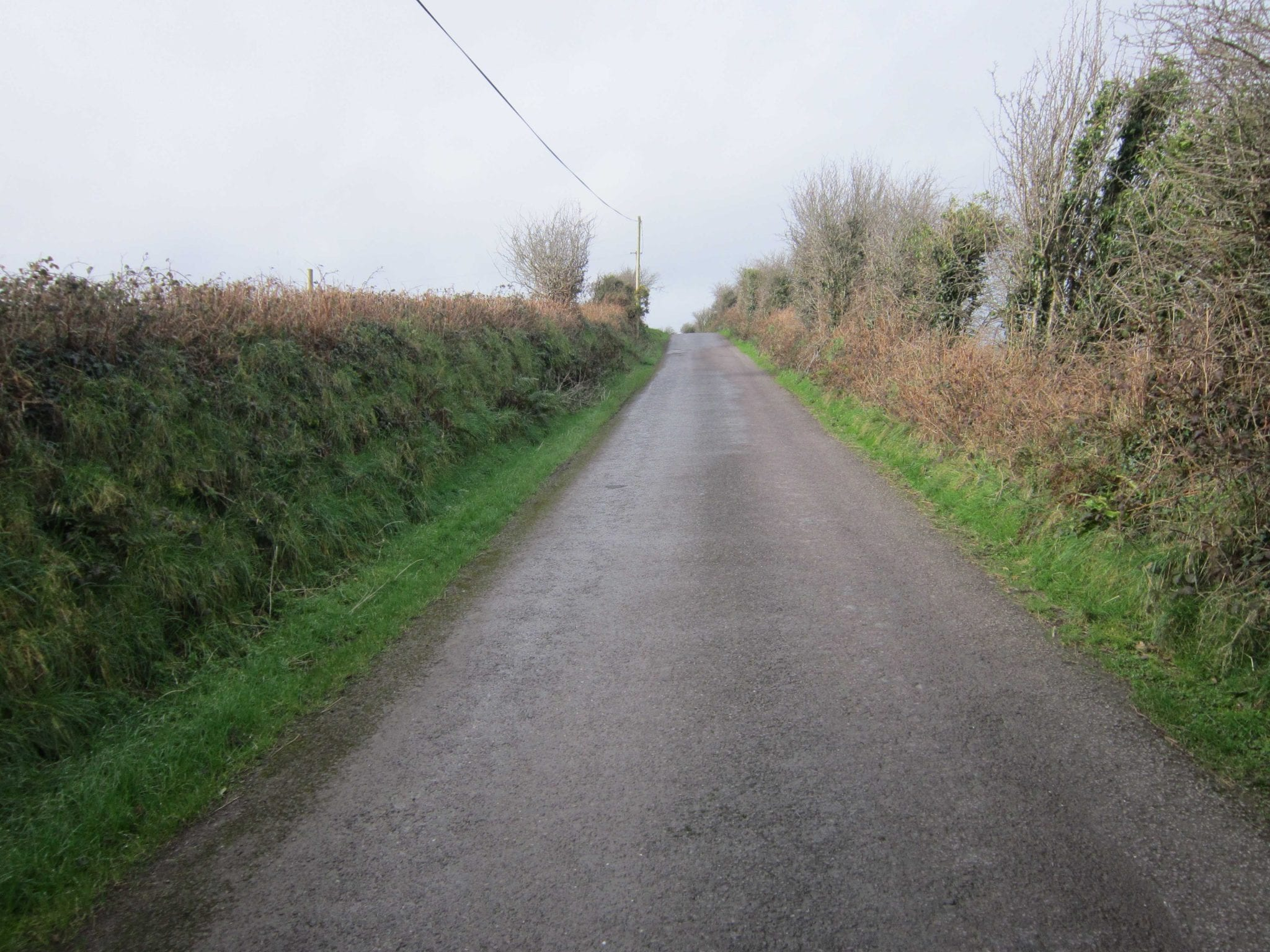 2. Road IMG_4702