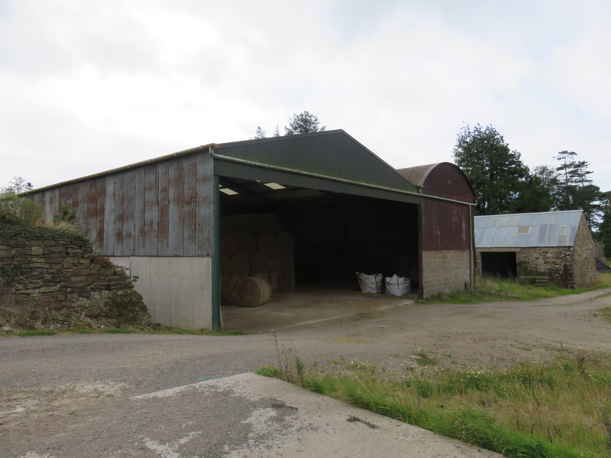 Shed c IMG_7347
