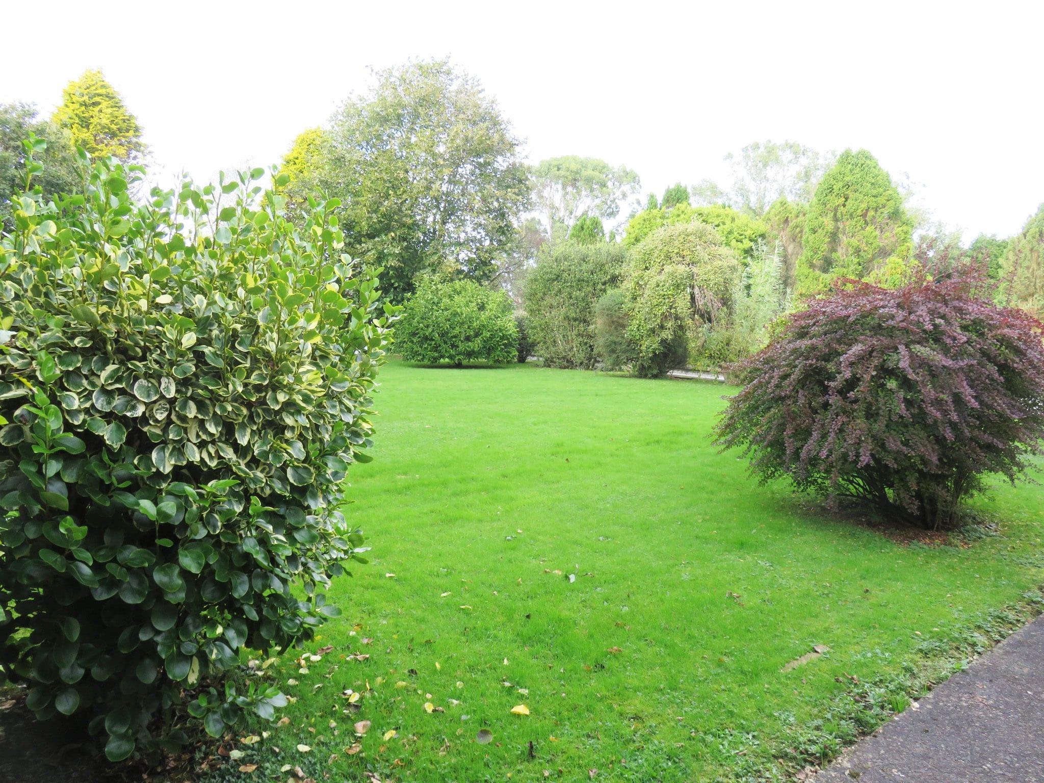 12. Garden IMG_7650