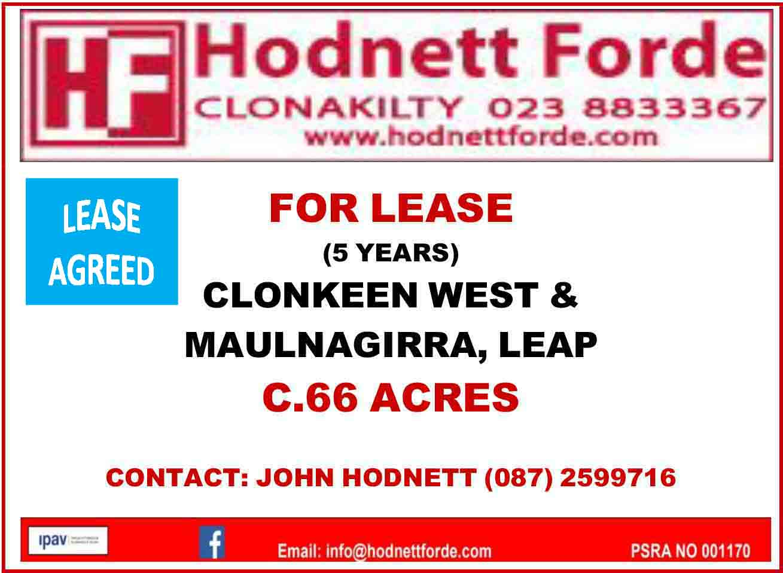 8. Cloonkeen West & Maulagirra, Leap