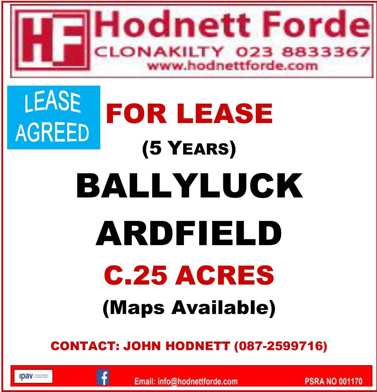 6. Ballyluck, Ardfield
