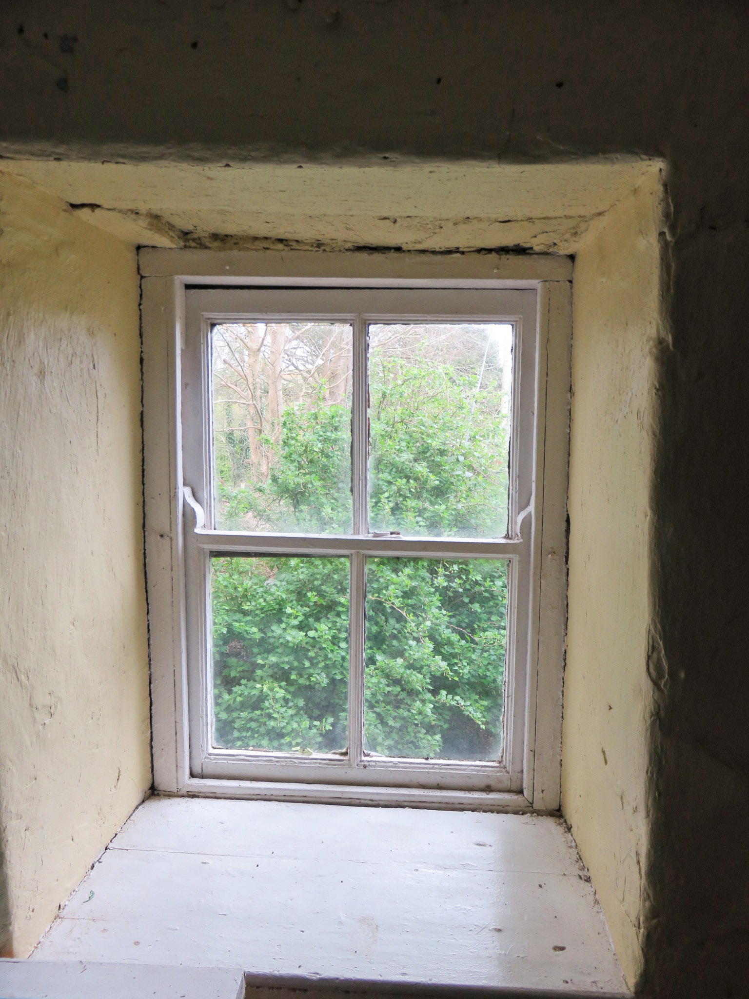 IMG_1555 window